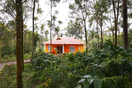 Himadri Tree Shade  Garden view Room in cottage