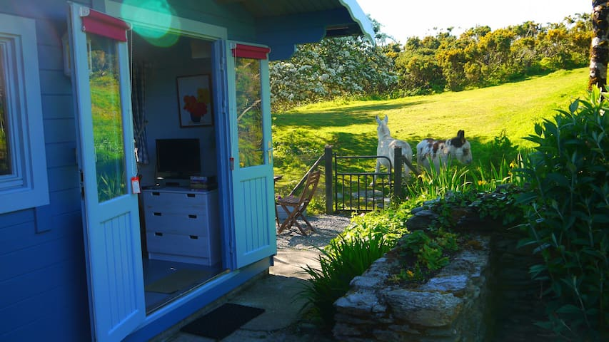 Garden Chalet. Wild Atlantic way set in 17 acres - Schull - Dağ Evi