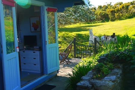 Garden Chalet. Wild Atlantic way set in 17 acres - Schull - 牧人小屋
