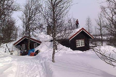 Hyggelig hytte i Havsdalen, Geilo - Geilo