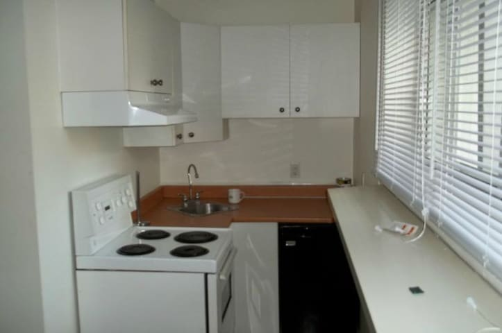 Full studio with private kitchenette and bathroom - Montréal