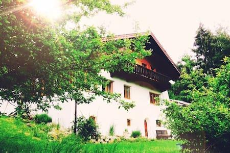 Isabella´s Waldhäusl - Neu-Terfens