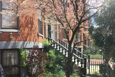 Charming 1 bedroom Condo in Historic South End