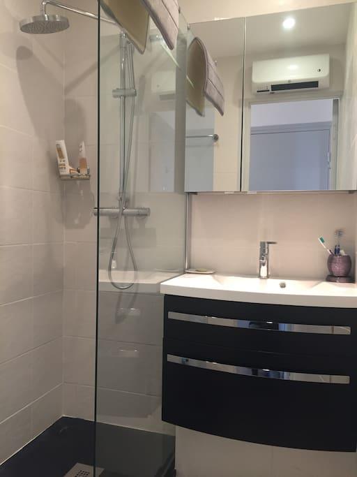 Salle de bain bien aménagée et fonctionnelle (douche à l'italienne)