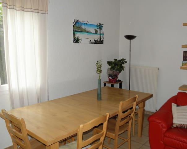 Chambre dans villa avec jardin - Castanet-Tolosan - House