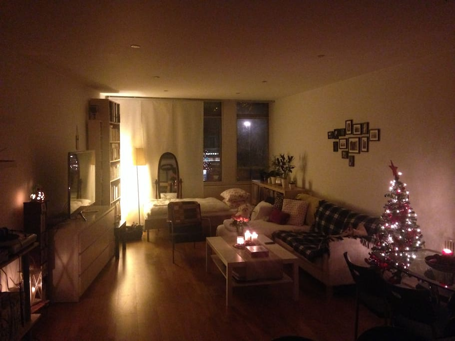 Huge living room - the bed can be seen in the back