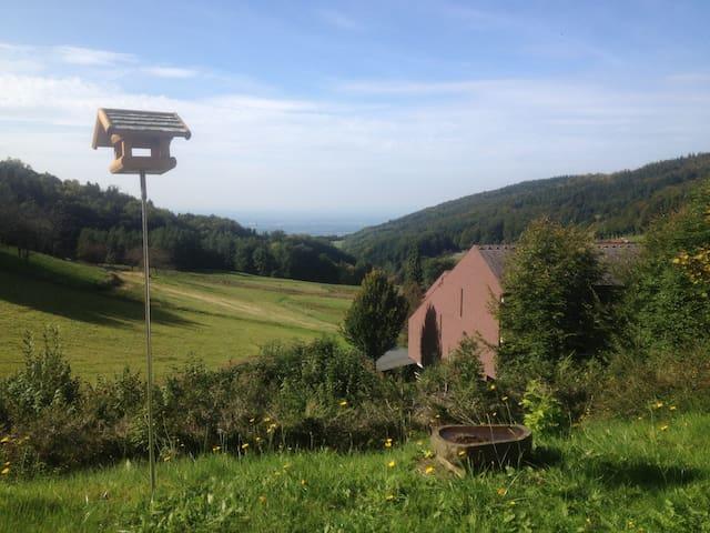 Urlaub mitten in der Natur mit Blick ins Rheintal