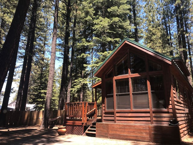 The Bear Den- (Pets Welcome!!) So. Lake Cabin