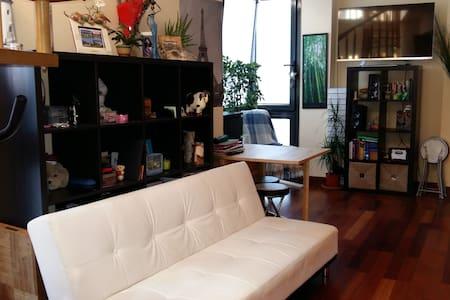 Sunny Studio & 30mt Terrace-Estudio y terraza 30mt - Madrid