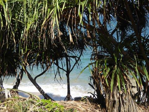 Coco beach bungalow, Pangani hideaway