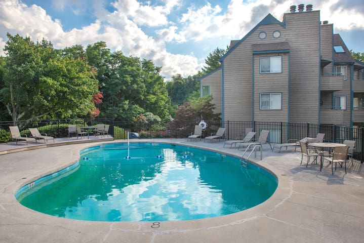 Studio condo w/wood fireplace-shared indoor/outdoor pool, gas grill