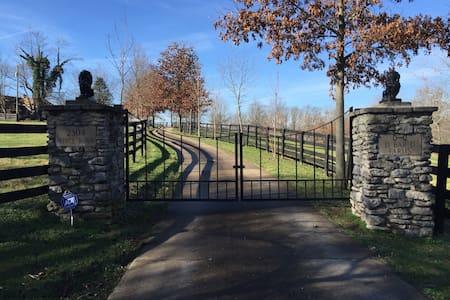 Amazing Horse Farm near Keeneland - Nicholasville