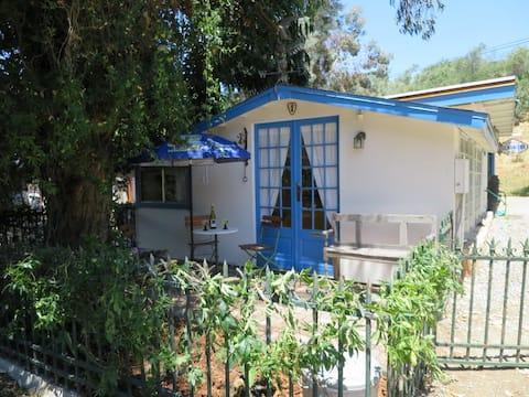 Carmel Valley Village - Studio 50