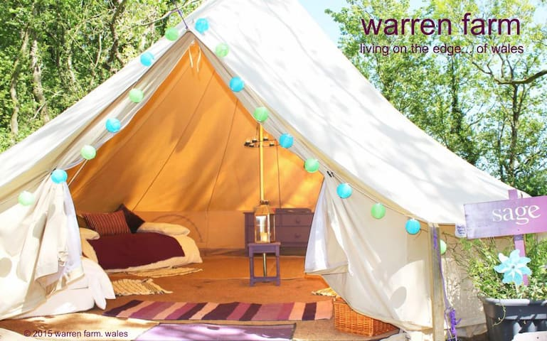 Sage, 6m bell tent on Pemb Path - Pembroke - Tent