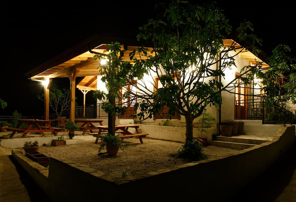 Cafe terrace by night.