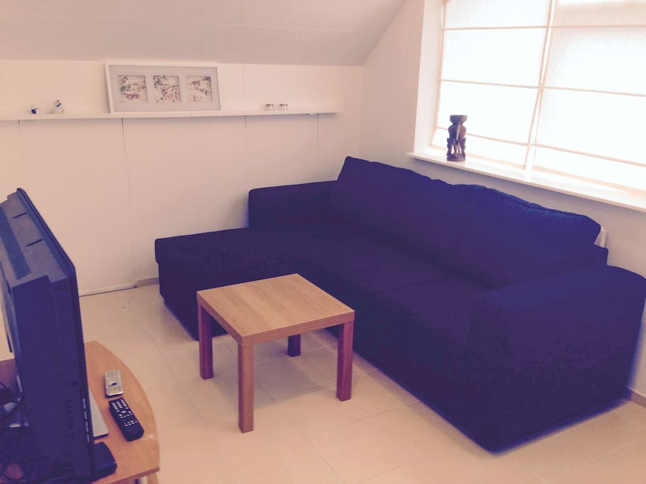 The living room, with sofa bed, flat screen TV, DVD player and cable TV