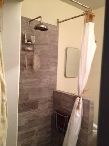 Remodeled shower with vintage flare