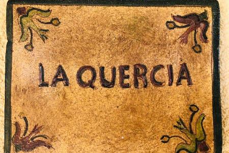 HHCuordiNatura ~ La Quercia