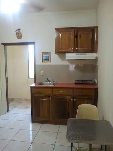 Kitchenette with cook top and small refrigerator.