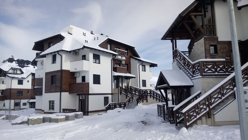 Zlatibor the Only Pine apartments A 4