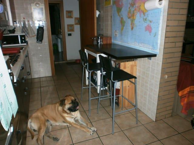cucina con Charlie- kitchen whit Charlie