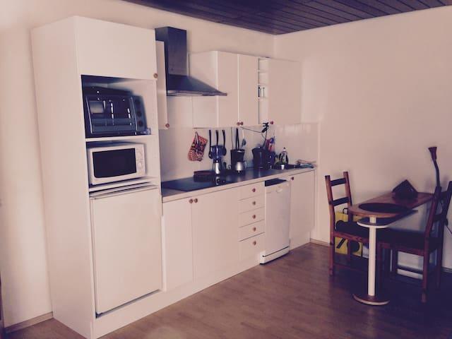 1 ZW Nähe Frankfurt/ Dreieich - Dreieich - Condominium
