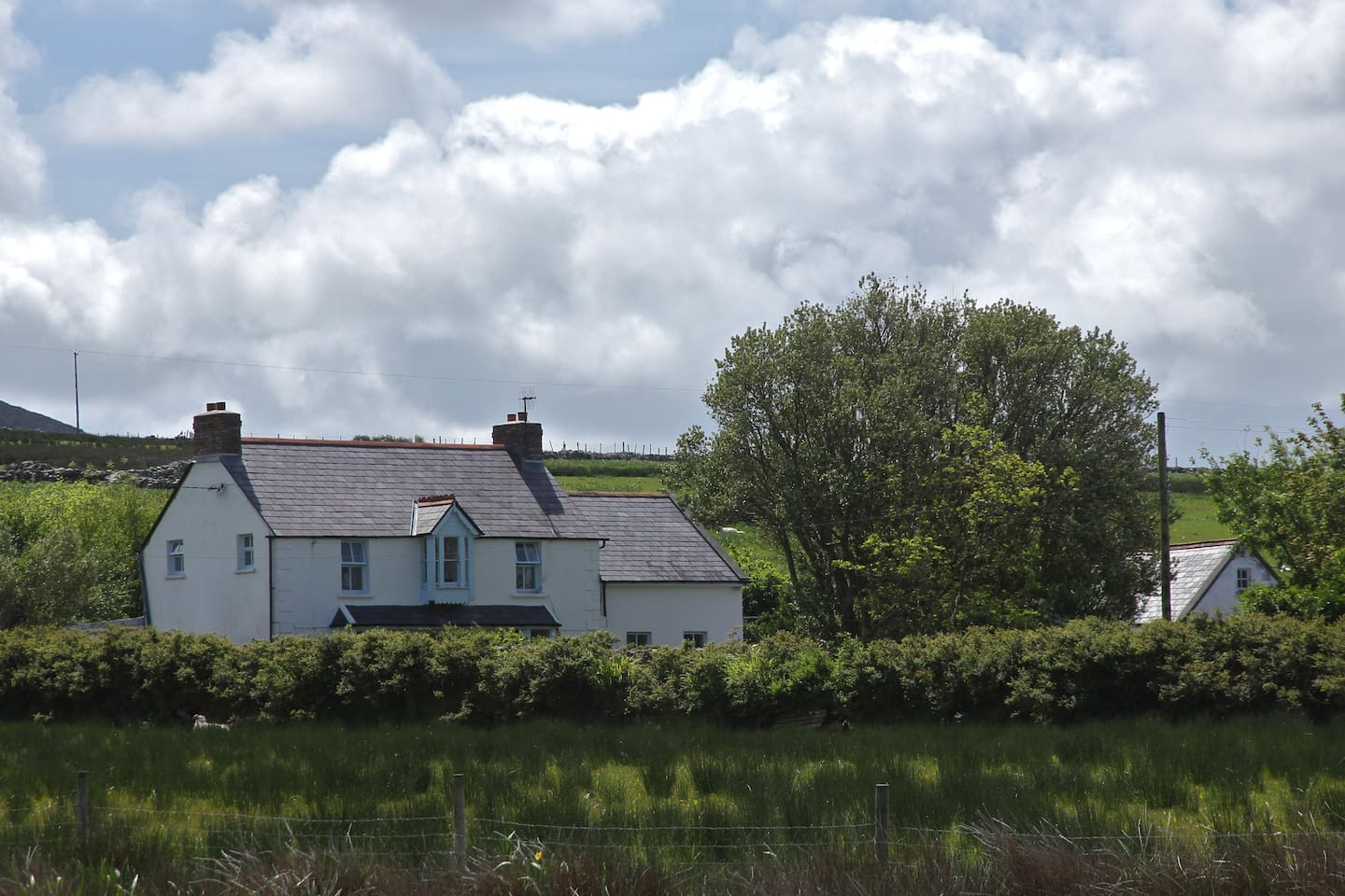 Traditional Cottage in a beautiful rural setting. The Wild Atlantic Way driving route passes the cottage.