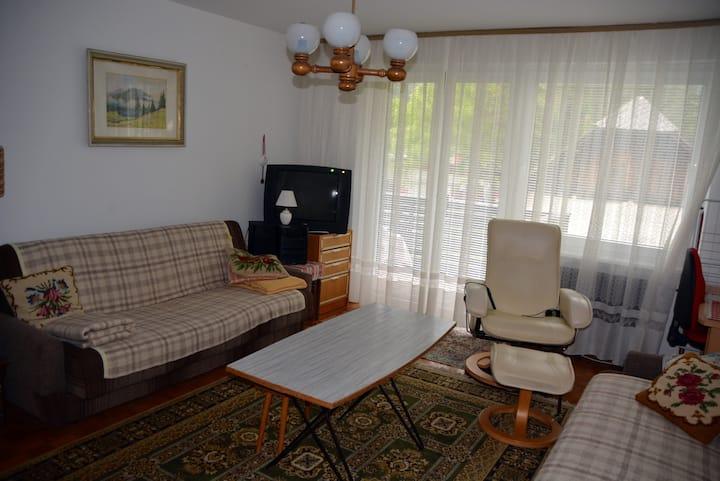 Apartment Mojstrana