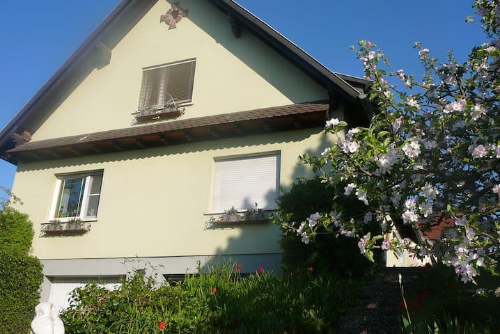 Appartement de vacances en Alsace - Marlenheim - Byt