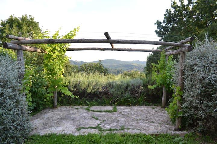 Garden retreat Saturnia hot springs - Poderi - Pension