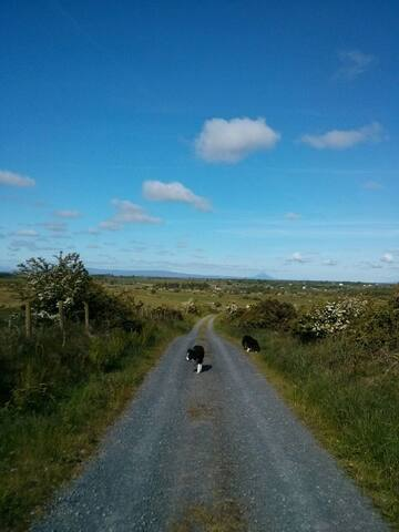 Peaceful roads, with Croagh Patrick in the far distance
