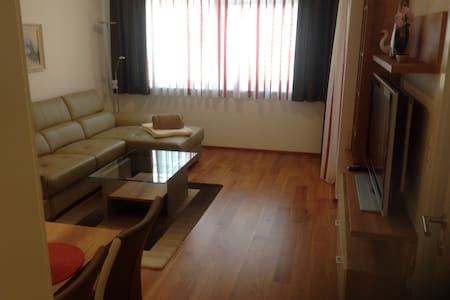 Ruhige Wohnung mit Garten 46 qm - Spittal an der Drau - Apartment