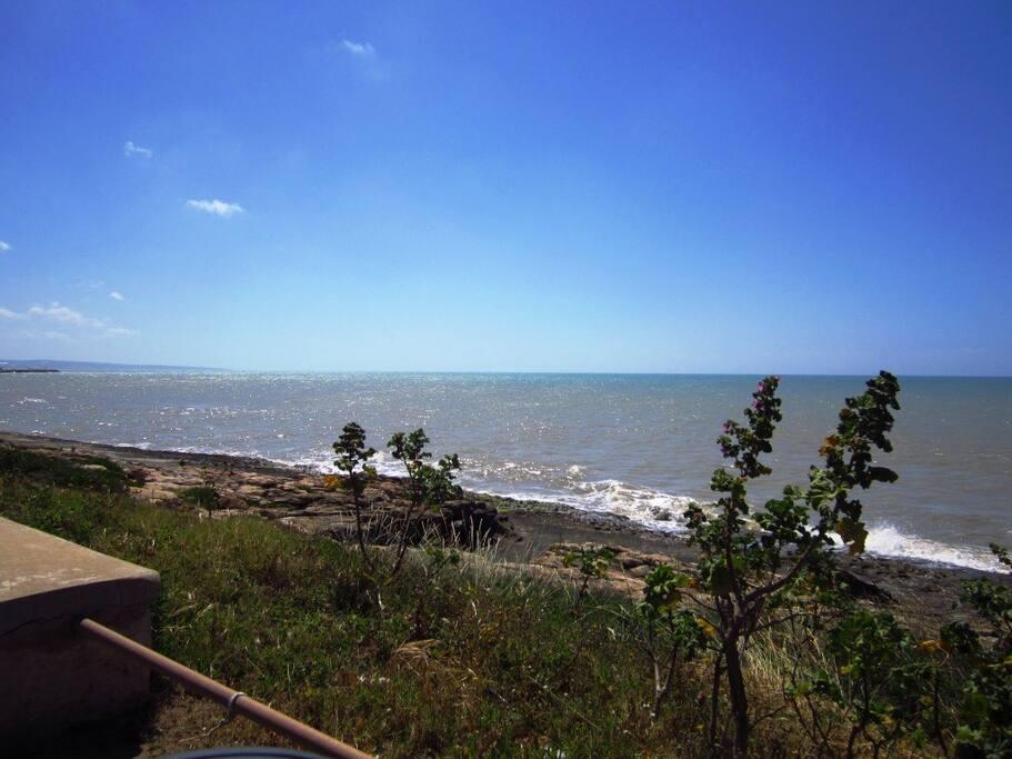 litorale