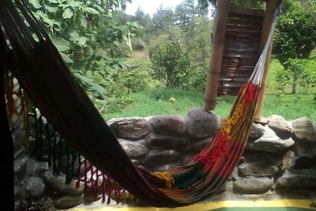 Coffee plantation with amazing view - Hornito - Bed & Breakfast
