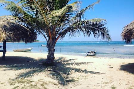 The Dominican experience - Buen Hombre