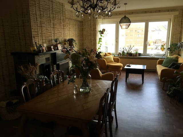 Cosy room in apartment near centre of Ghent