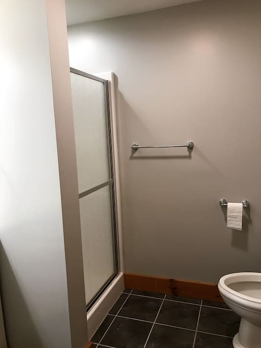 Bathroom includes a shower.