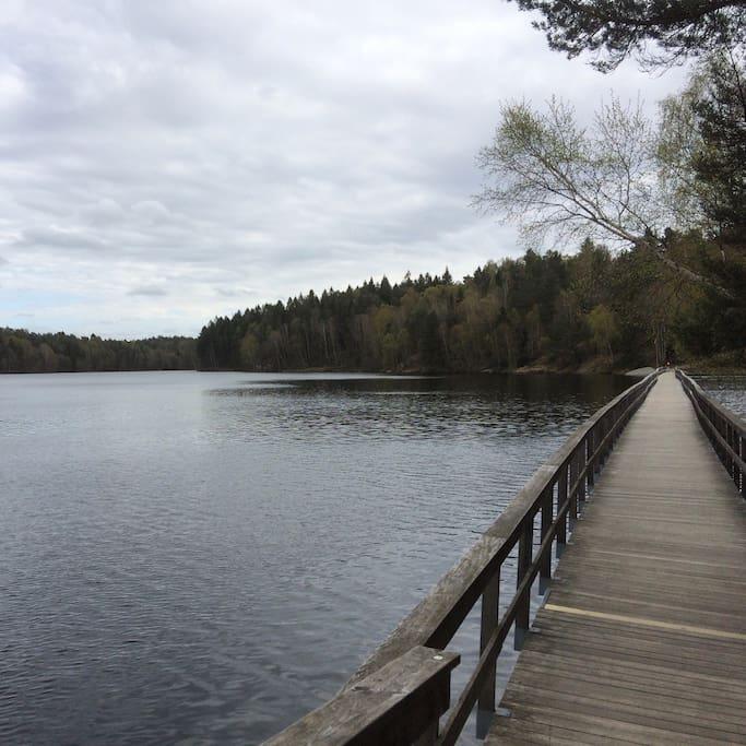Le lac est à 5km de l'appartement