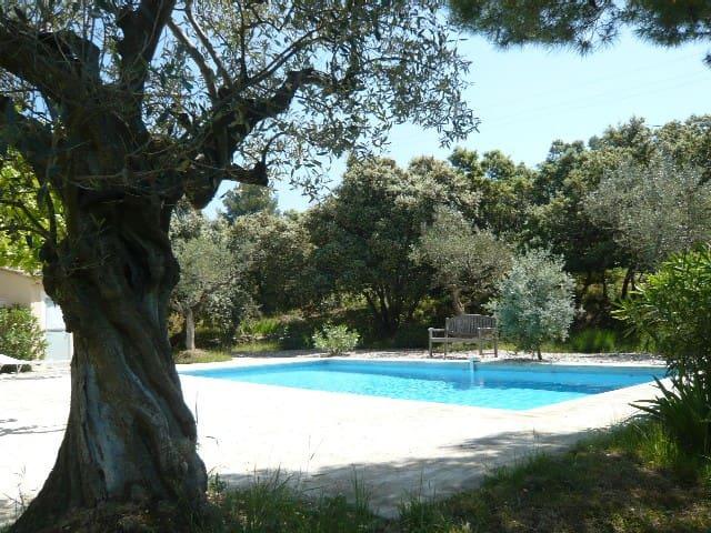 LE LUBERON : Gite dans la garrigue avec piscine
