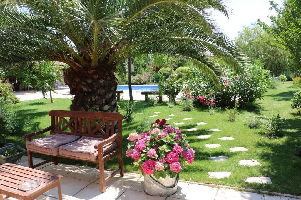 Villa De Charme Avec Piscine Chambres D 39 H Tes Louer