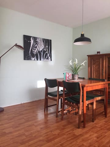 Cozzy and spacious apartment - Delft - Wohnung