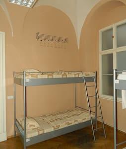 1 bed N 6 Charles bridge 200m Prague castle 500m - Prague - Dorm
