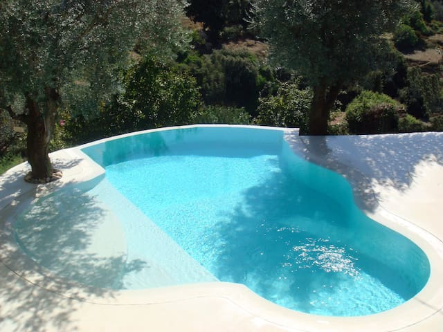 Loft 110m2 fully privative salted pool 2BR - Olivese - Villa