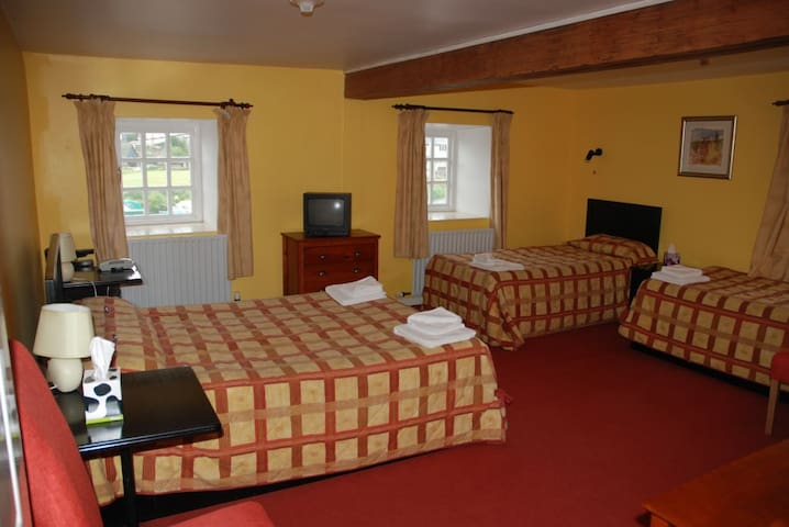 Waterside Guesthouse - Graiguenamanagh - Bed & Breakfast