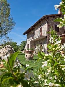 Relais Parco Subasio 2/4 - Person - Assisi