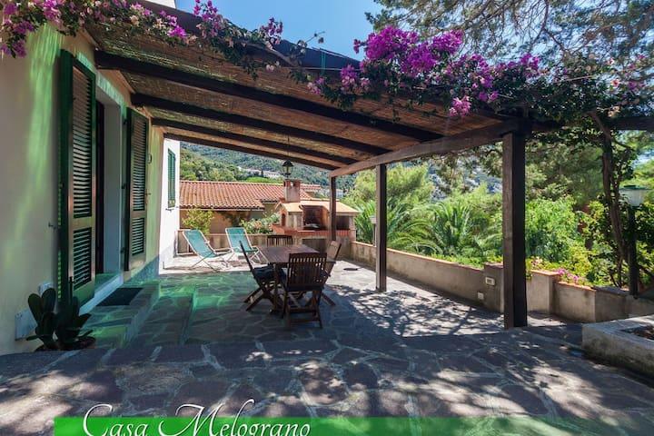 Casa Melograno - Marciana