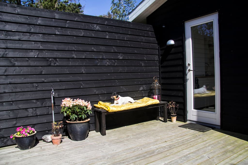 Enjoy the sun in the patio between the two houses