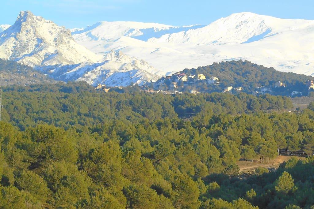 Vista en invierno de la Urbanización donde nos encontramos desde Granada.