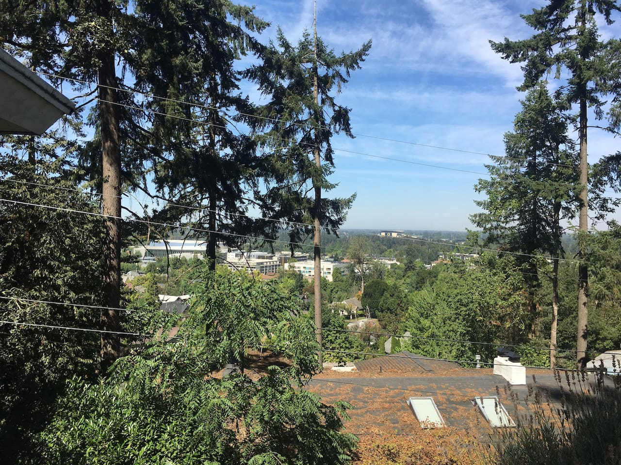Wake up, roll over and have a look at that view. The campus is right below you, and historic Hendricks Park just above. In fact it's right behind the house!