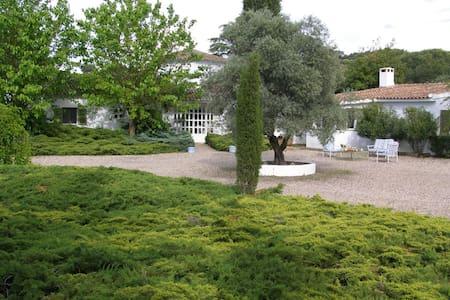 Preciosa casa de campo - Las Herencias